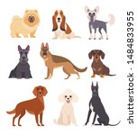 dogs collection. vector... | Shutterstock .eps vector #1484833955