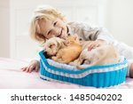 Stock photo child with baby dog and cat kids play with puppy and kitten in a basket little boy and american 1485040202