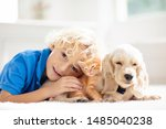 Stock photo child with baby dog and cat kids play with puppy and kitten in a basket little boy and american 1485040238