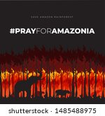 Save Amazonia Forest In Brazil...