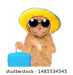Smiling Puppy With Summer Hat...