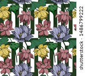 vector lotus floral botanical... | Shutterstock .eps vector #1486799222
