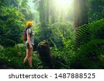 Woman with backpack exploring the beautiful rain forest on the islands of Indonesia.Travel and ecotourism concept.