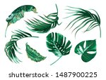 tropical palm leaves  monstera  ... | Shutterstock .eps vector #1487900225