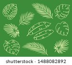 vintage hand drawn tropical... | Shutterstock . vector #1488082892