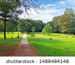 Park Of Pejacevic Castle Or...