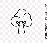 broccoli icon isolated on...