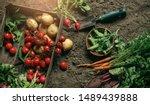 fresh vegetables  potato ... | Shutterstock . vector #1489439888