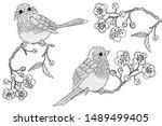 birds hand drawn in vintage...   Shutterstock .eps vector #1489499405