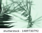 Abstract Shadow Background Of...