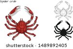 Crab Vector By Hand Drawing...