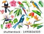 Set Of Tropical Birds  Flowers...