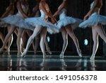 Swan Lake Ballet. Closeup Of...