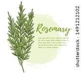 fresh rosemary herb. natural... | Shutterstock .eps vector #1491212102