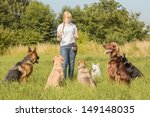 Stock photo a group of dogs listen to the commands of the dog trainer 149148035
