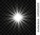 bright sunshine. beautiful... | Shutterstock .eps vector #1492051055