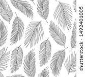 palm leaves black ink vector... | Shutterstock .eps vector #1492401005
