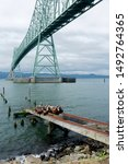 Astoria, Oregon is home to the Astoria-Megler Bridge, among other attractions.
