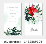 red and white poinsettia... | Shutterstock .eps vector #1492869305