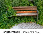 Bench Partially Hidden By The...