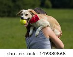 Stock photo small funny dog with ball 149380868