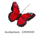 Stock photo a red butterfly isolated on white 14939245