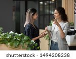 two young diverse business...   Shutterstock . vector #1494208238
