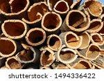 Harvested Cork Oak Bark From...