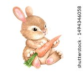 Cute Rabbit With Carrot On A...