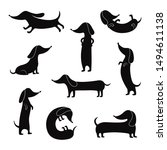 Stock vector black silhouettes of dachshunds dogs in various funny poses set of vector illustrations isolated on 1494611138