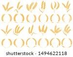 wheat or barley ears. golden... | Shutterstock .eps vector #1494622118