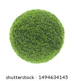 circle shape clipped topiary...