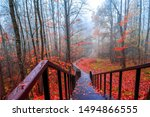 Red autumn forest park stairs...