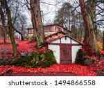 Red Autumn Forest House Scene....