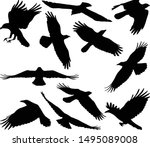 Flying Crow Silhouettes  ...