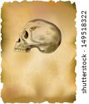 skull on old parchment | Shutterstock .eps vector #149518322