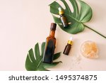 cosmetic nature skincare and... | Shutterstock . vector #1495374875