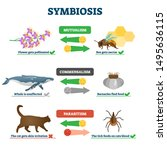 symbiosis vector illustration.... | Shutterstock .eps vector #1495636115