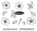 detailed hand drawn black and...   Shutterstock .eps vector #1495640015