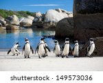 Jackass Penguin March