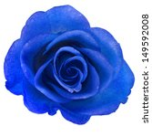 Beautiful Blue Rose With Water...