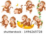 Collection Of Monkey In...