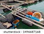 Basket Trap And Fishing Net For ...