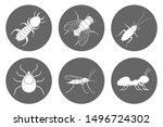 insects icon set. cockroach ... | Shutterstock .eps vector #1496724302
