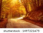 Beautiful Sunny Autumn...