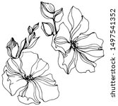 vector flax floral botanical...   Shutterstock .eps vector #1497541352