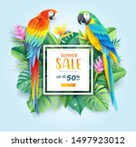summer sale card with scarlet... | Shutterstock .eps vector #1497923012