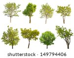 Set Of Eight Green Trees...