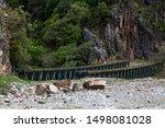 Roads And Bridge In Tzoumerka...