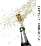 sparks of champagne | Shutterstock . vector #14981665